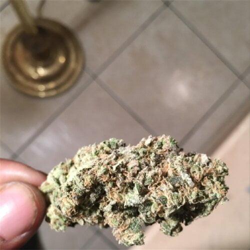 Blueberry OG Bud